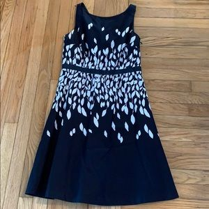 Navy & White Ann Taylor Loft Dress